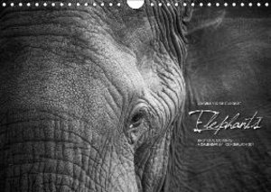 Emotional Moments: Elephants / UK Version (Wall Calendar 2015 DI