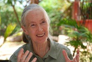 Janes Journey - Die Lebensreise der Jane Goodall