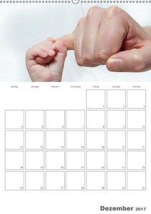 Emotionale Momente: Mein Babyplaner für das ganze Jahr / Planer
