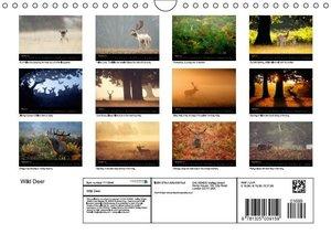WILD DEER (Wall Calendar 2015 DIN A4 Landscape)