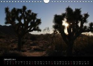 USA South-West 2015 (Wall Calendar 2015 DIN A4 Landscape)