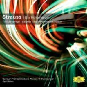 Richard Strauss: Ein Heldenleben