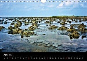 Wattlandschaften (Wandkalender 2016 DIN A4 quer)