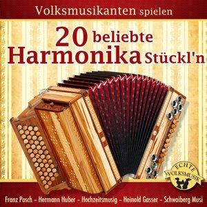 Volksmusikanten spielen 20 beliebte Harmonika Stüc