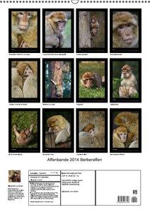 Affenbande 2014 Berberaffen (Wandkalender immerwährend DIN A2 ho