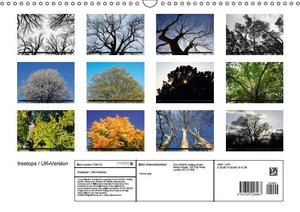 treetops / UK-Version (Wall Calendar 2015 DIN A3 Landscape)