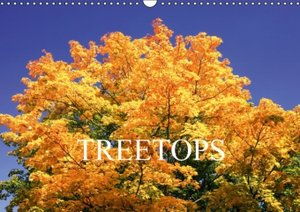 treetops / UK-Version (Wall Calendar 2015 DIN A3 Landscape)