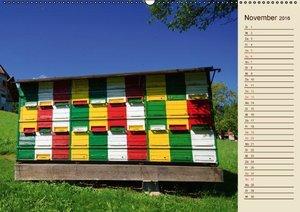 Ein Leben für den Honig (Wandkalender 2016 DIN A2 quer)