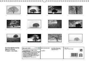 Gerlach, I: Emotional Moments: Black & White Fineart - Die E