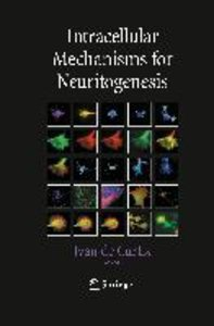 Intracellular Mechanisms for Neuritogenesis