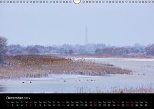 Blackpool and the Fylde Coast (Wall Calendar 2015 DIN A3 Landsca