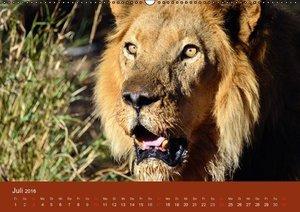 Namibia (Wandkalender 2016 DIN A2 quer)
