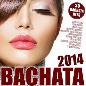 Bachata 2014
