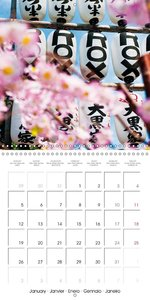 Passing beauty - Cherry blossoms in Japan (Wall Calendar 2015 30