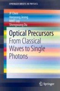 Optical Precursors