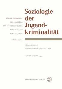 Soziologie der Jugendkriminalität