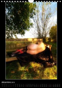 Enceinte et nue à la campagne (Calendrier mural 2015 DIN A4 vert