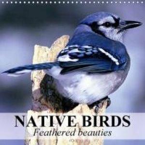 Native Birds - Feathered beauties (Wall Calendar 2015 300 × 300