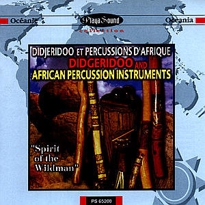 Didgeridoo And African Percuss