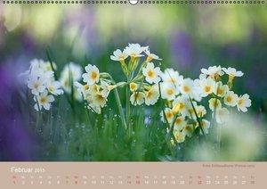 WILD UND GESUND (Wandkalender 2015 DIN A2 quer)