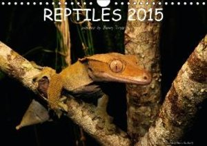 REPTILES / UK-Version (Wall Calendar 2015 DIN A4 Landscape)
