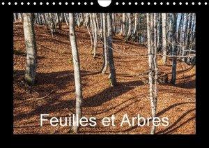 Feuilles et Arbres (Calendrier mural 2015 DIN A4 horizontal)