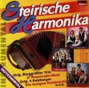 Steirische Harmonika Instrumen
