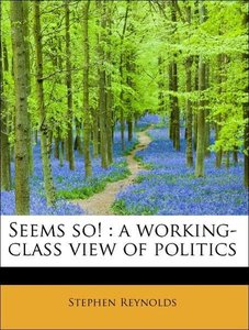 Seems so! : a working-class view of politics