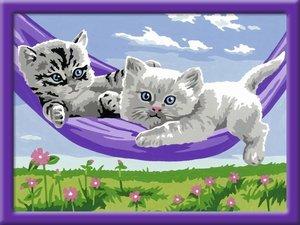 Kätzchen in der Hängematte
