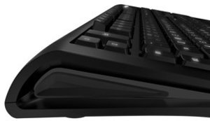 SteelSeries Gaming Tastatur Apex RAW - schwarz