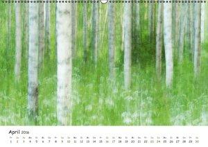 Einblick-Natur: Wildes Norkarelien (Wandkalender 2016 DIN A2 que