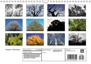treetops / UK-Version (Wall Calendar 2015 DIN A4 Landscape)