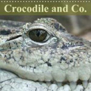 Crocodile and Co. (Wall Calendar 2015 300 × 300 mm Square)