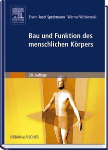 Bau und Funktionen des menschlichen Körpers
