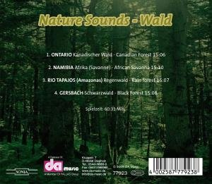 Nature-Sounds-Wald