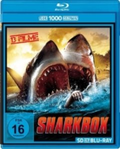 Shark Box XXL