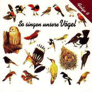 So Singen Unsere Vögel 6