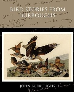 Bird Stories from Burroughs