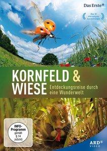Kornfeld & Wiese - Entdeckungsreise durch eine Wunderwelt