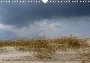 Strandwanderungen auf Texel (Wandkalender 2016 DIN A4 quer)