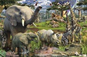 Tiere an der Wasserstelle