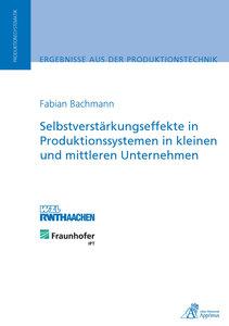 Selbstverstärkungseffekte in Produktionssystemen in kleinen und