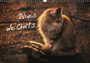 Blues de Chats (Calendrier mural 2015 DIN A3 horizontal)