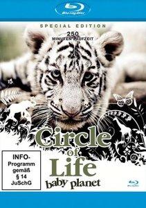 Circle of Life-Baby Planet