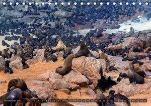 Namibia - Die Tierwelt (Tischkalender 2016 DIN A5 quer)