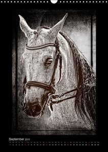 Equestrian art (Wall Calendar 2015 DIN A3 Portrait)
