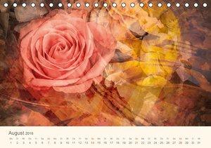 Silent World (Tischkalender 2016 DIN A5 quer)