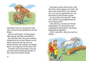 Leselöwen - Das Original: Meine liebsten Leselöwen-Pony- und Pfe