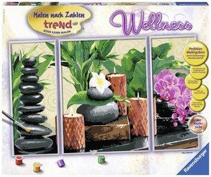 Wellness MnZ Sonderserie Premium