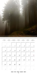 In the Woods (Wall Calendar 2015 300 × 300 mm Square)